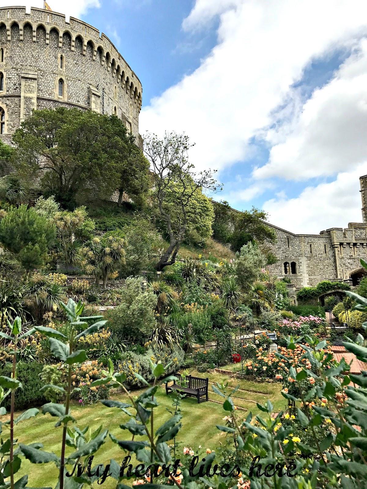 the savill garden my heart lives here