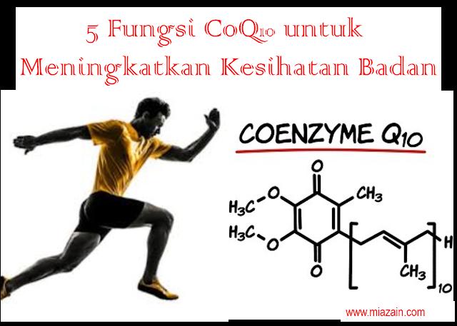 Fungsi CoQ10