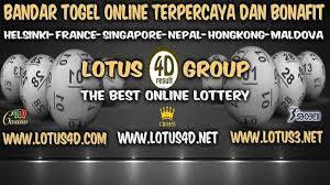 lotus4d grup
