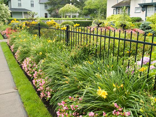 ide pagar minimalis dengan tanaman
