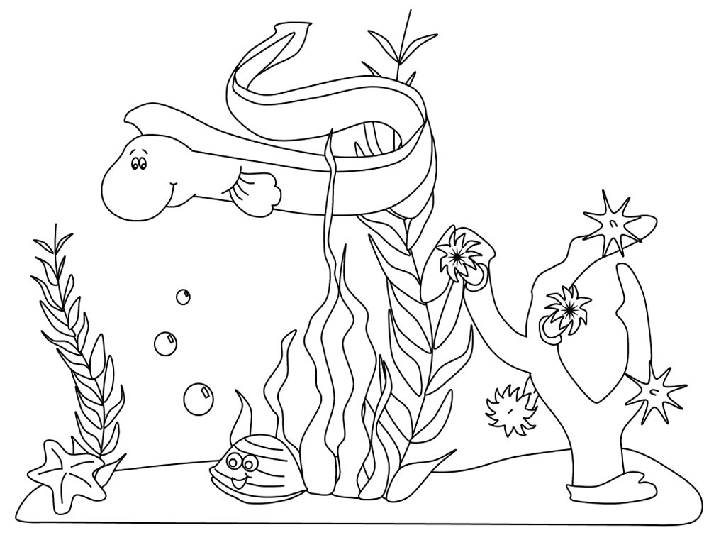 marine animals coloring pages | Baú da Web: Desenhos Fundo do Mar para colorir