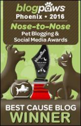 Best Cause Blog 2016