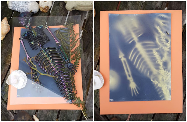 Whoopidooings: Carmen Wing - Experiments with Cyanotype on a Cloudy Day