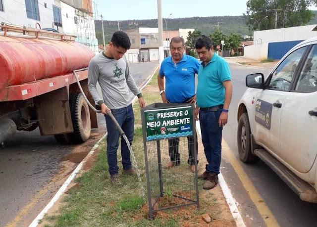 Prefeitura de Barreiras avança com programa de arborização em ruas e avenidas da cidade