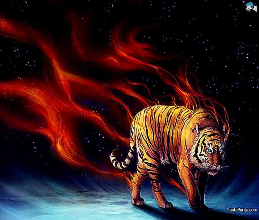 Abstract Digital Abstract Fire Tiger Wallpapers Hd