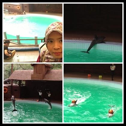 Dolphin Show Taman Safari Indonesia 2
