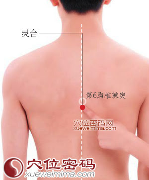 靈台穴位 | 靈台穴痛位置 - 穴道按摩經絡圖解 | Source:xueweitu.iiyun.com