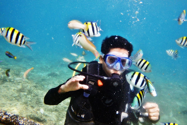 JustMom-Scuba-Diving-Scuba-Diving-Experince-Fish-Feeding-Terence-1