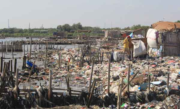 pantai kota cirebon dipenuhi sampah