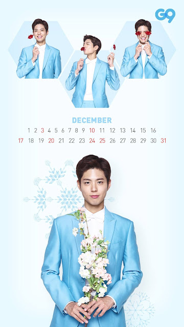 朴寶劍-2017年桌曆