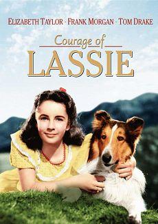 Baixar Torrent Lassie Download Grátis