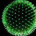 Celiachia,scovati virus che potrebbero scatenare la malattia