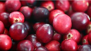 gambar buah kranberi, cranberry
