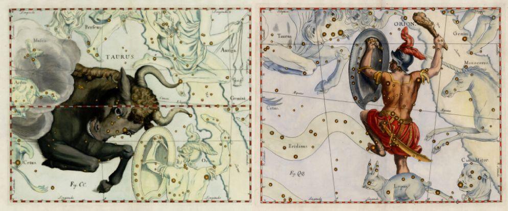 Representación de Johannes Havelius de las constelaciones de Tauro y Orión en el Havelius Firmamentum de 1690