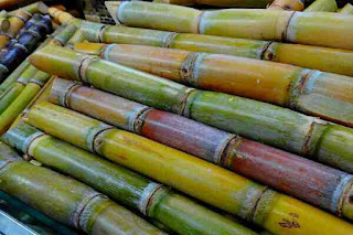 Sugarcane juice health benefits in hindi