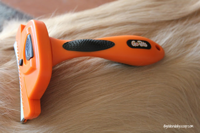 dog grooming tools, grooming your golden retriever, Deshedding tool review and giveaway