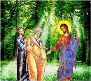 Κυριακή IB΄ του Ματθαίου (Ματθ. 19, 16-24)