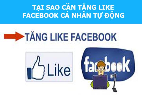 tang like facebook ca nhan tu dong