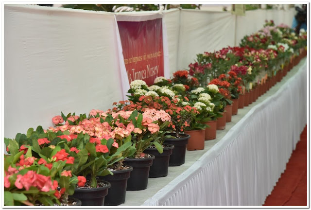 Mumbai International Airport and GVK Botanical Gardens in association with the Mumbai Rose Society bring to you the 4th 'International Flower Show