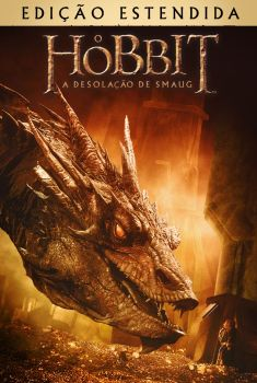 O Hobbit: A Desolação de Smaug 3D Torrent - BluRay 1080p Dual Áudio