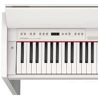 Roland f140R white