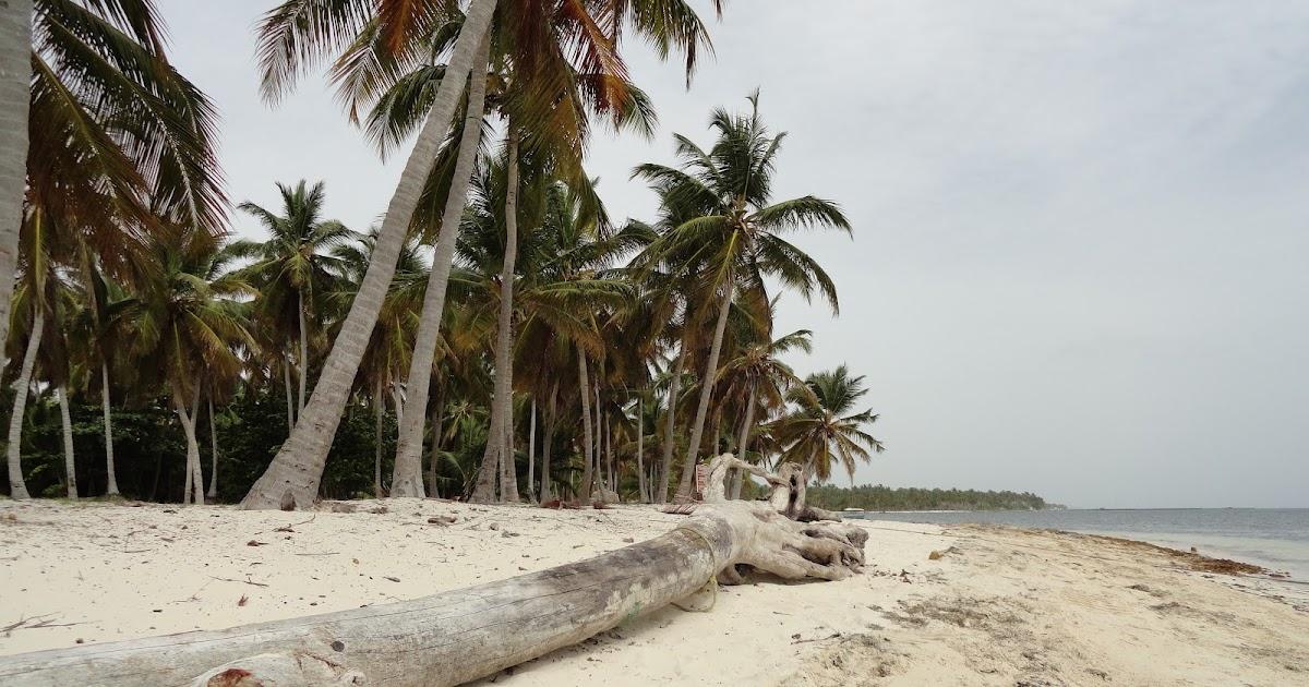 Punta Cana Buggy Tour Video