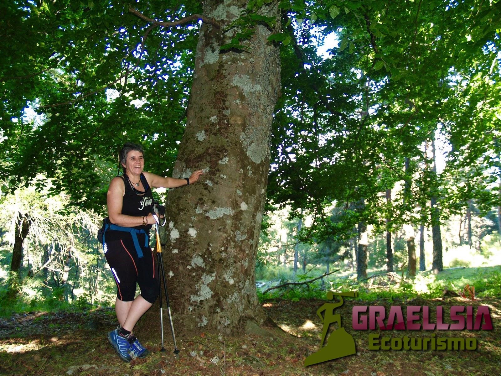 Cuaderno de Campo de Graellsia Ecoturismo: Monte Abantos (Tour ...