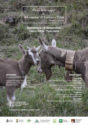 Fiera delle capre e del caprino 18 settembre Caslino d'Erba (CO) 2016