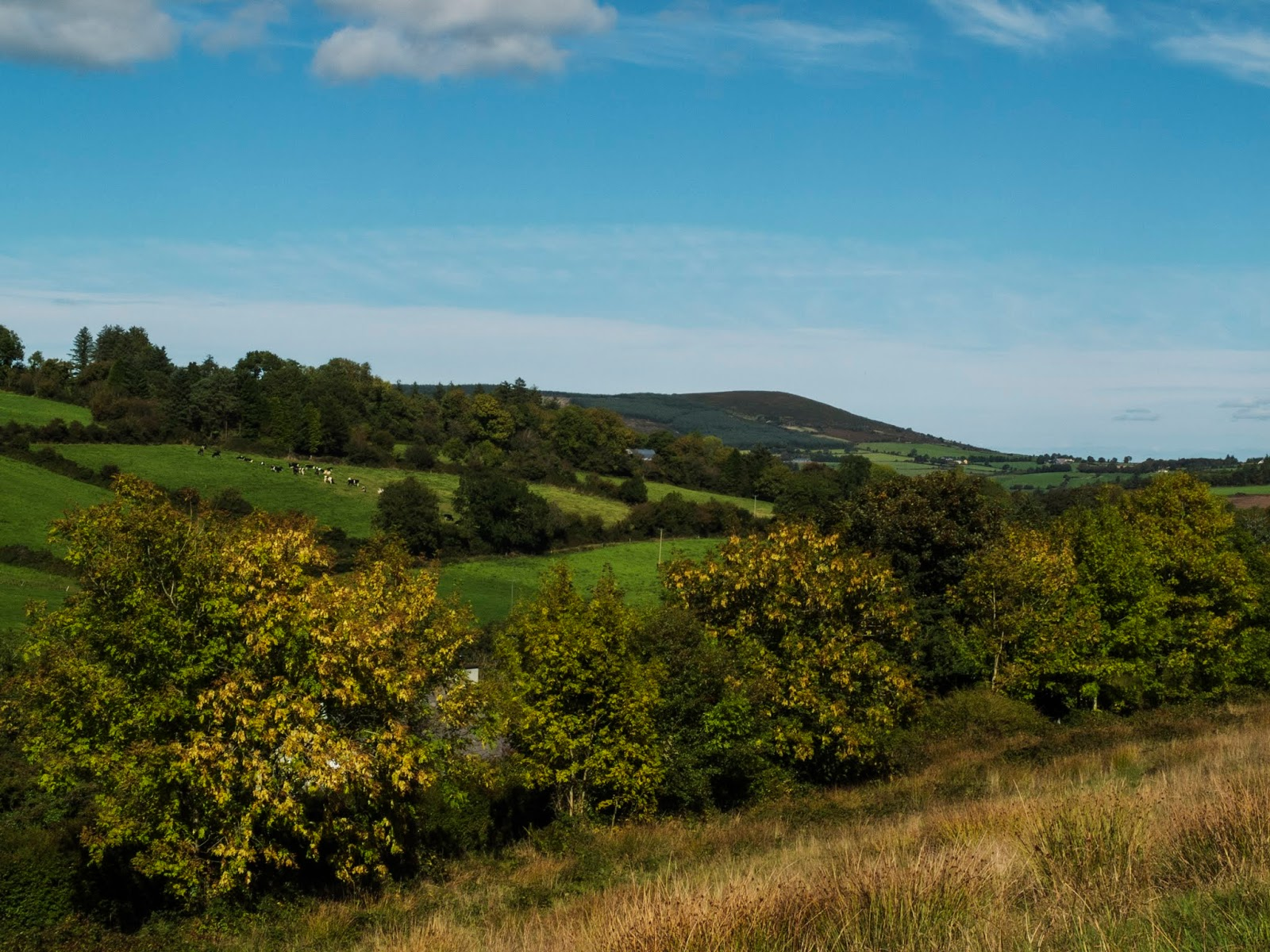 Mountain side views on a sunny day in the Boggeragh Mountains, Co.Cork
