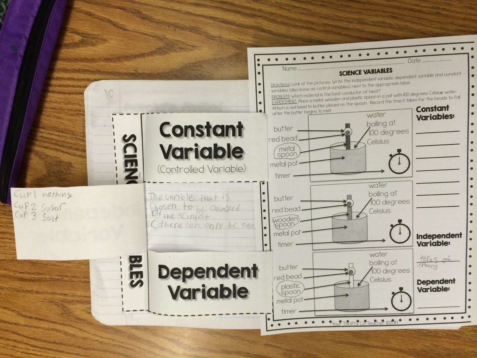 Scientific Variables Constant Independent And Dependent
