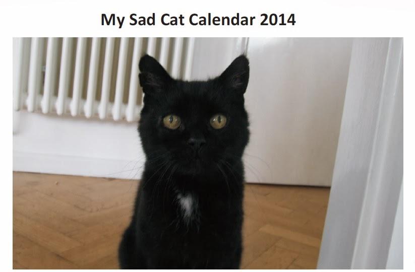 Under The Paw: US and Overseas My Sad Cat Calendar