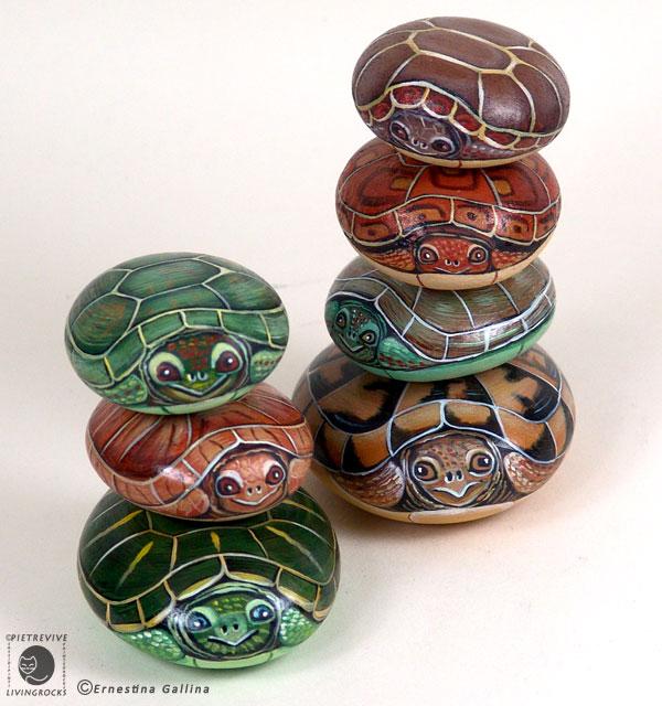 Sassi a p arte tartarughine for Sassi per tartarughe