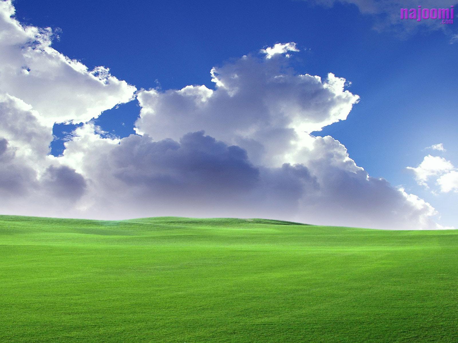 Free 3D Windows Xp Wallpapers,Vista,Nature,Animals,Fun,Entertainment: Windows Xp Wallpapers ...