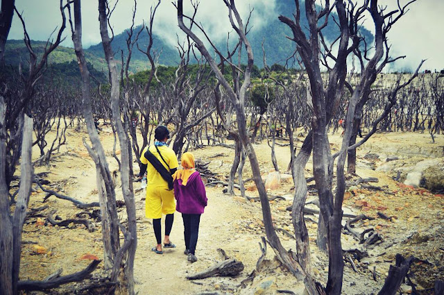 foto prewedding di hutan mati gunung papandayan