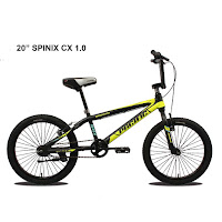 20 pacific spinix cx10 bmx