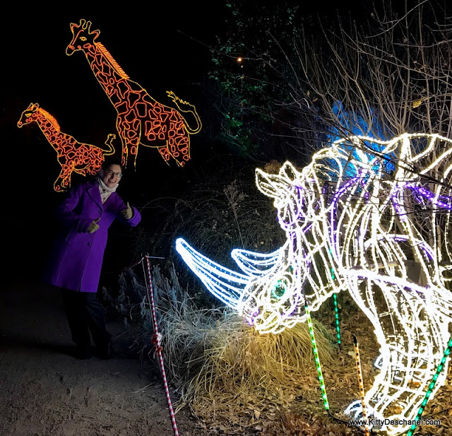 zoo lights albuquerque nm