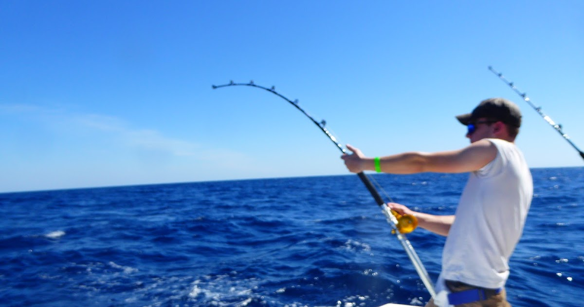 MAD MARLIN LODGE BLOG SAIL FISH MARLIN ON THE FLY FREE - Where is guatemala located