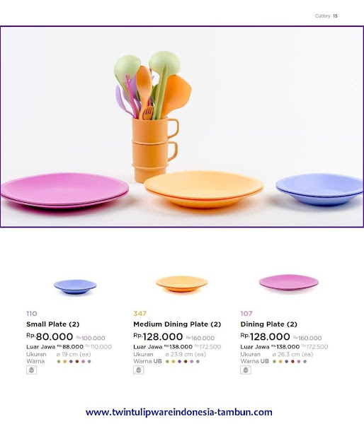 Small Medium Dining Plate