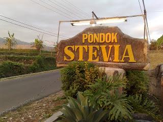 Pondok Stevia Ciwidey