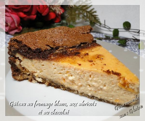 cheescake sans gluten abricot chocolat