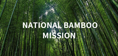 National+Bamboo+Mission