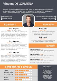 Exemple de CV moderne et original