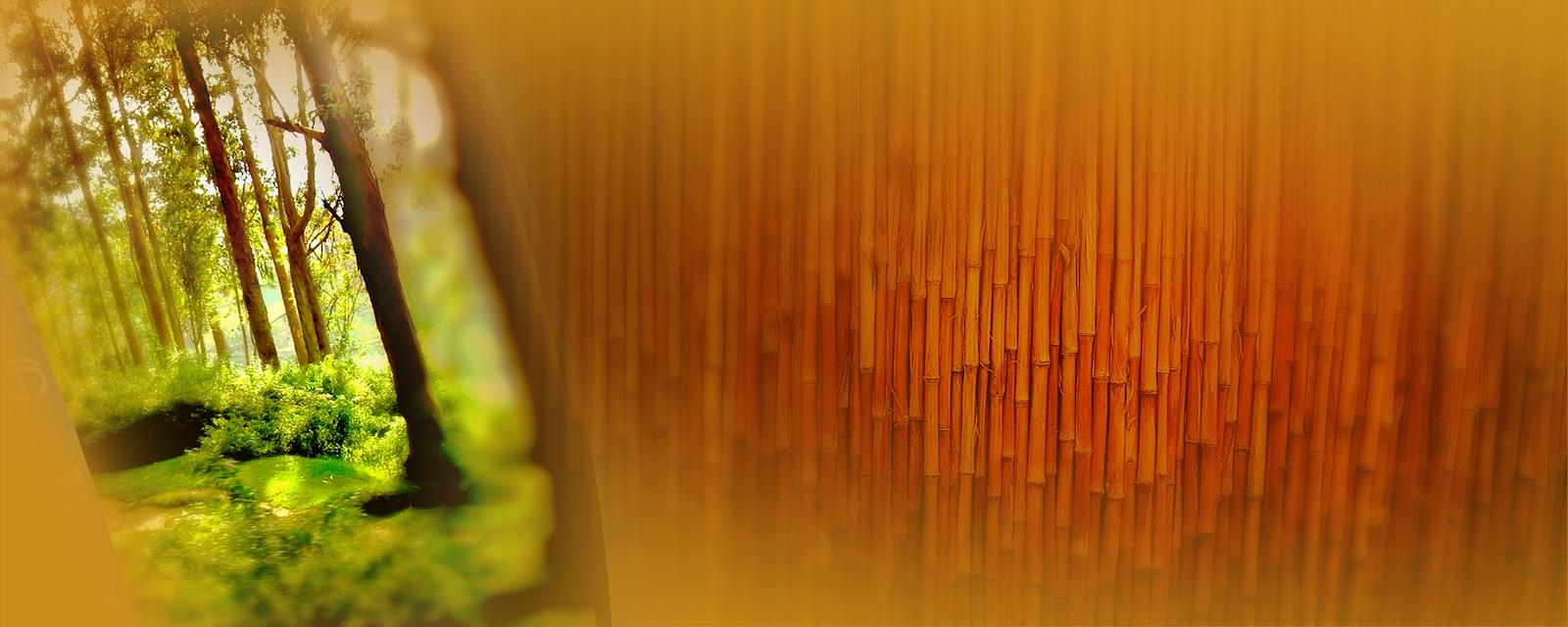 Jamali Web Letest Karishma Album Backgrounds PSD Design Karizma Background Frames KARIZMA ALBUM TEMPLATES