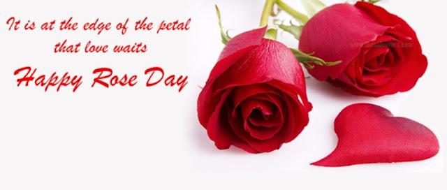 Happy Rose Day 2017