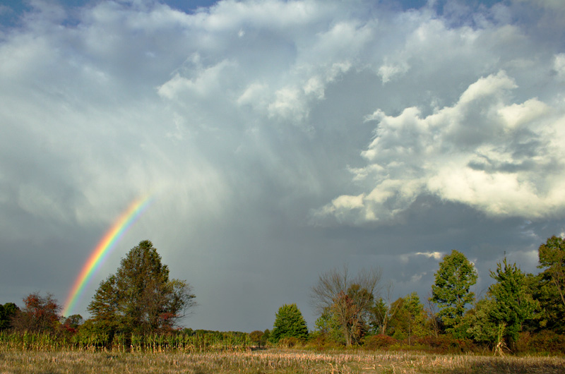 Rainbows and Rain Clouds