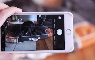Cara Mencari Foto Apa Pun Di Aplikasi Foto iPhone / iPad