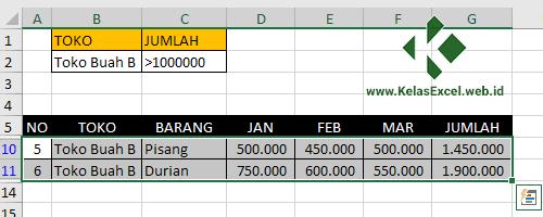 Langkah Menggunakan Advanced Filter Pada Excel 5