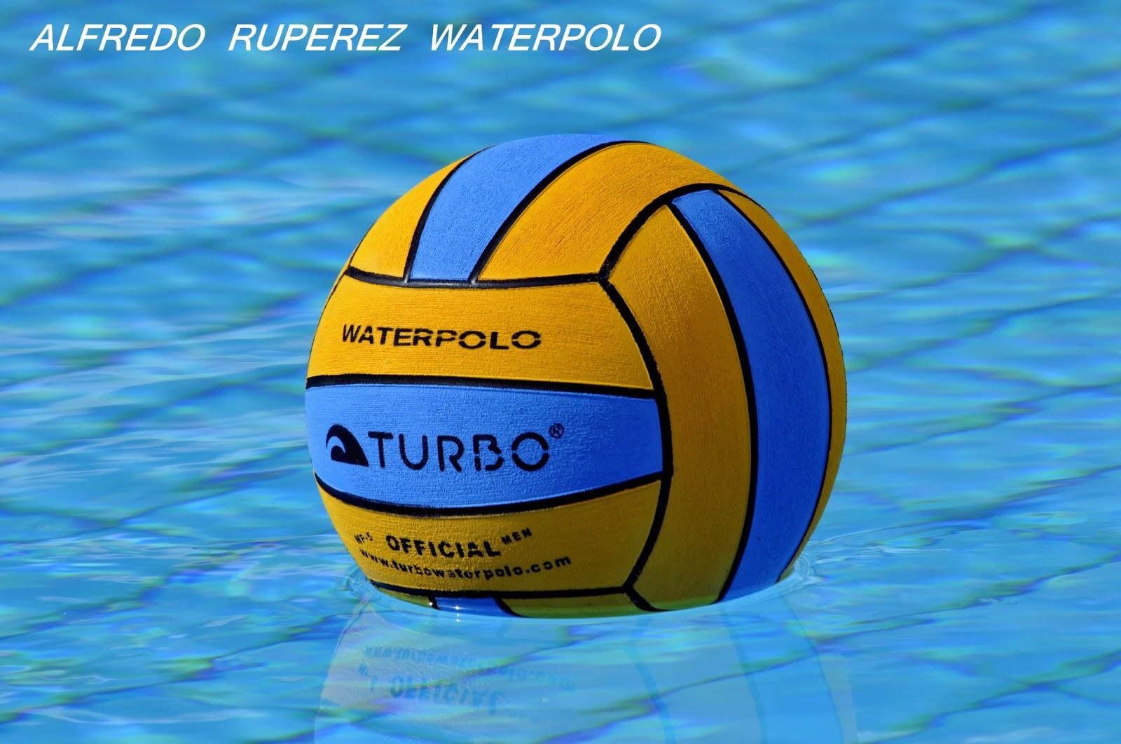 Adjudicación de sedes de los diferentes Campeonatos de España de waterpolo. 08fabbfa74c6