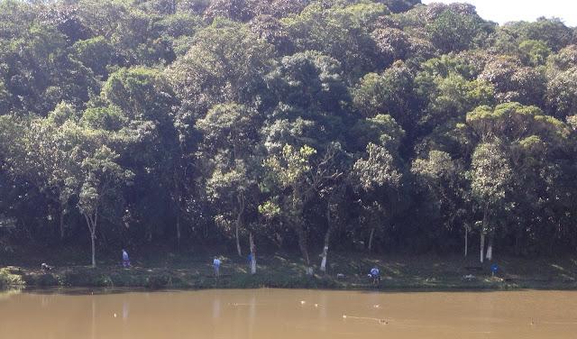 Carretilha, Dica na Pesca, Modalidade de Pesca, Molinete, Pesca de Barranco, Pescaria