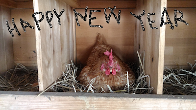 Happy New Year from a Chicken
